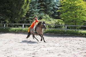Vanessa Voltigiren u.Circus Fantastico 438